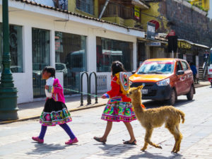 Girls walking Alpaca in Cusco